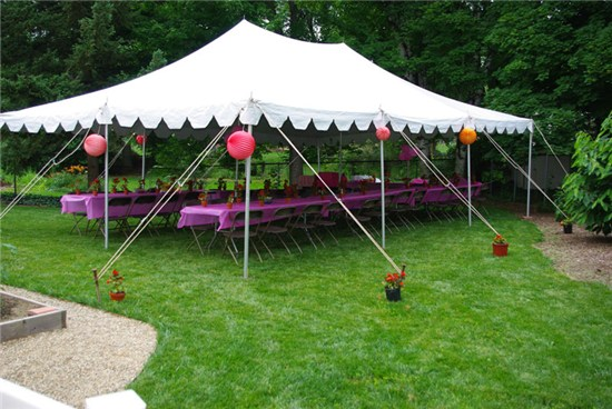$230.00 & Tents | Milleru0027s Party Rental
